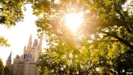 Sunny-Disney-jpg